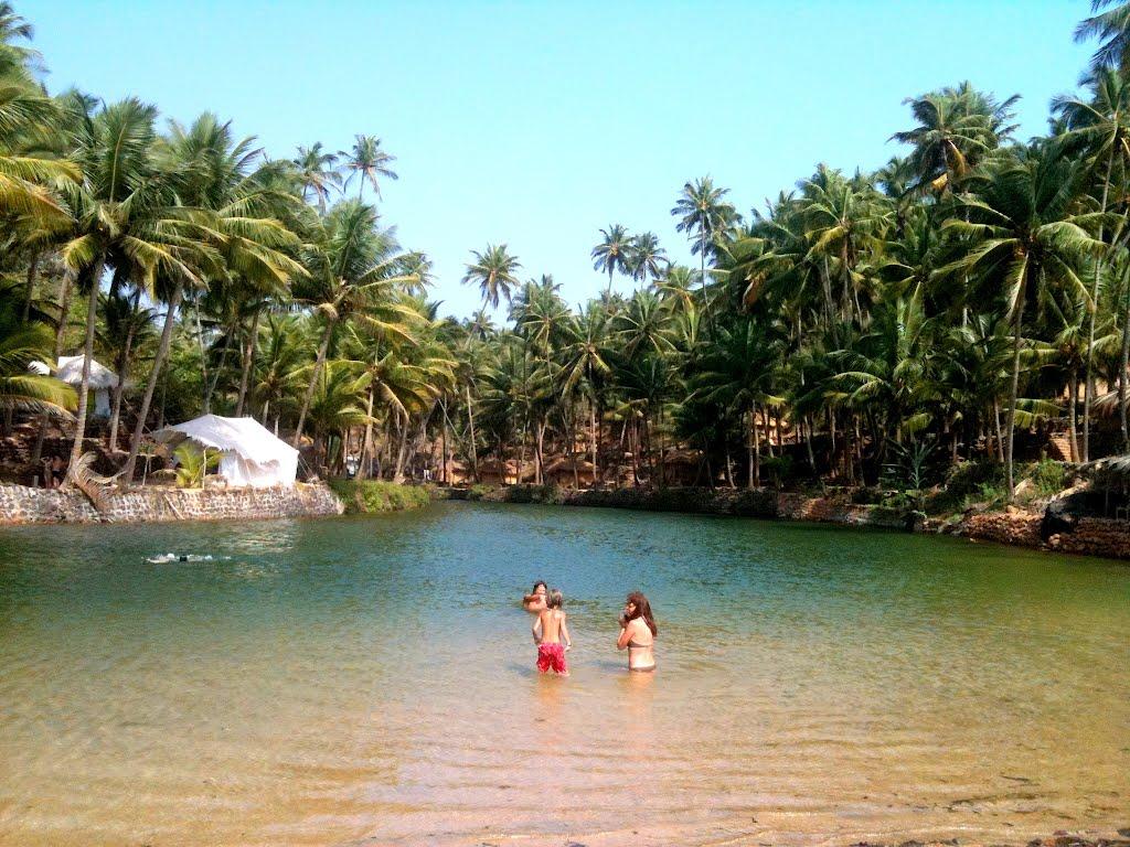 Resultado de imagem para Goa