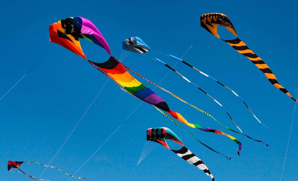 kite-uttarayan-gujarat